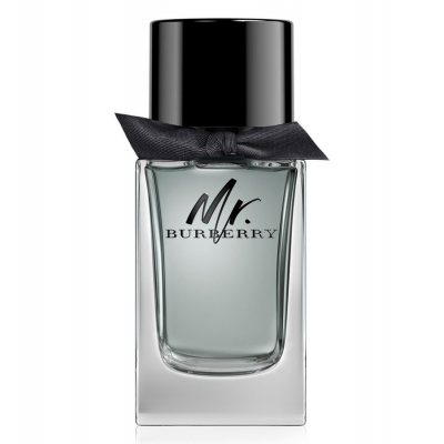 Burberry Mr. Burberry edt 50ml