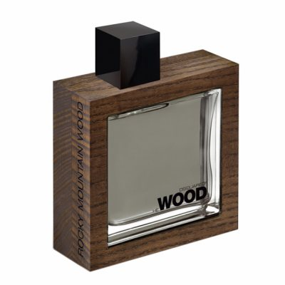 Dsquared2 HEWOOD Rocky Mountain edt 100ml